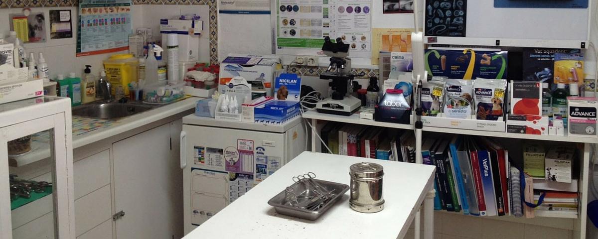 instalaciones clinica veterinaria huetor vega granada